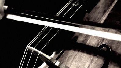El violoncello